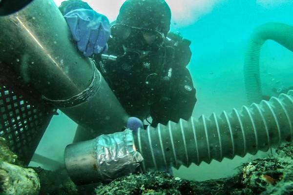 Płetwonurek - wydobywca - typowe nurkowanie...